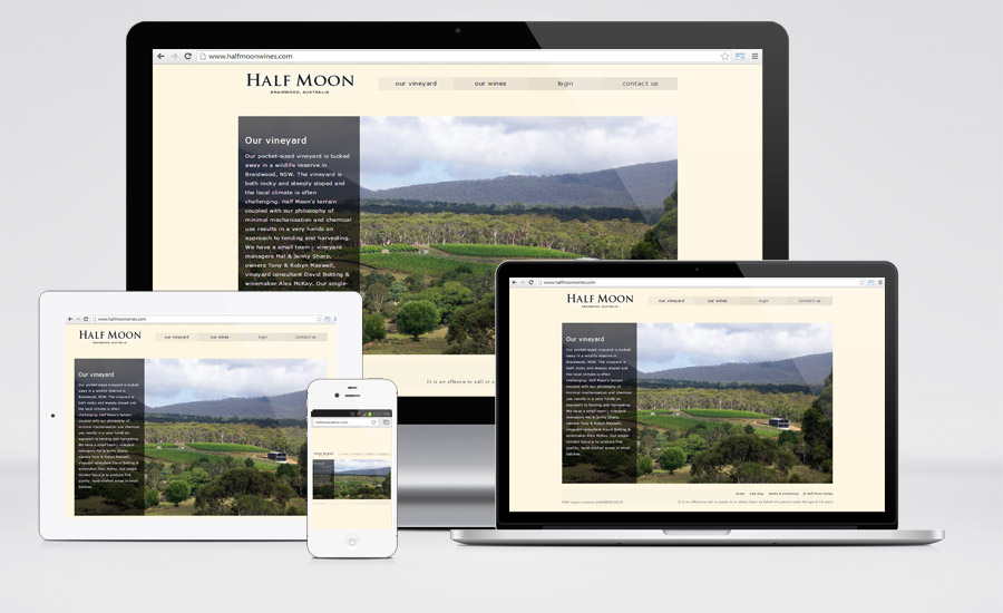 portfolio of a freelance web designer